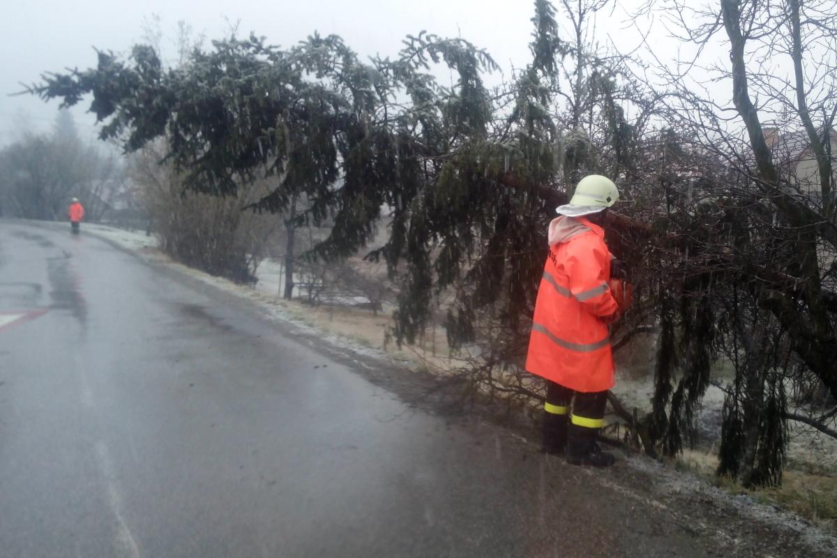 Technická pomoc – spadlý strom